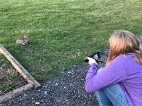 Joeli's photo session with one of our backyard friends.